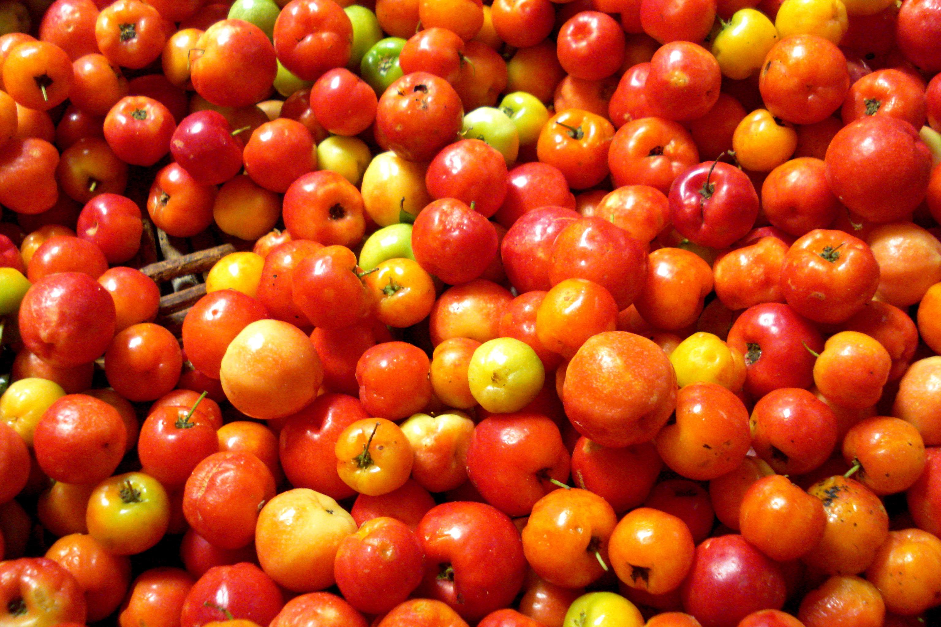 vitamina c é bom para hipotireoidismo
